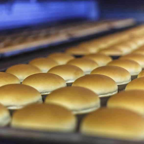 Hamburger breads goes out from bakery